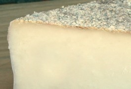 Pennard Vale Goats Cheese 02